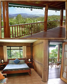 Atherton Blue Gum - Accommodation in Brisbane