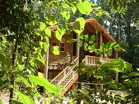 Rivers Edge Rainforest Retreat - Accommodation in Brisbane