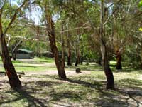 Woods Reserve - Accommodation in Brisbane
