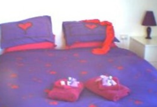 Aloomba Lavender - Accommodation - Accommodation in Brisbane