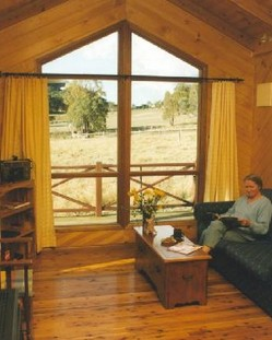 Wisteria Cottage - Accommodation in Brisbane
