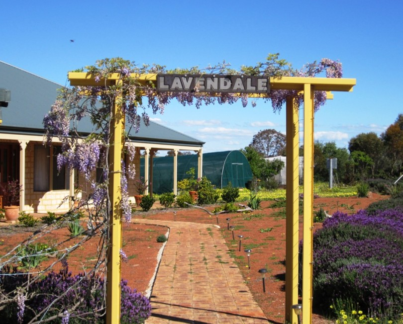 Lavendale Farmstay and Cottages