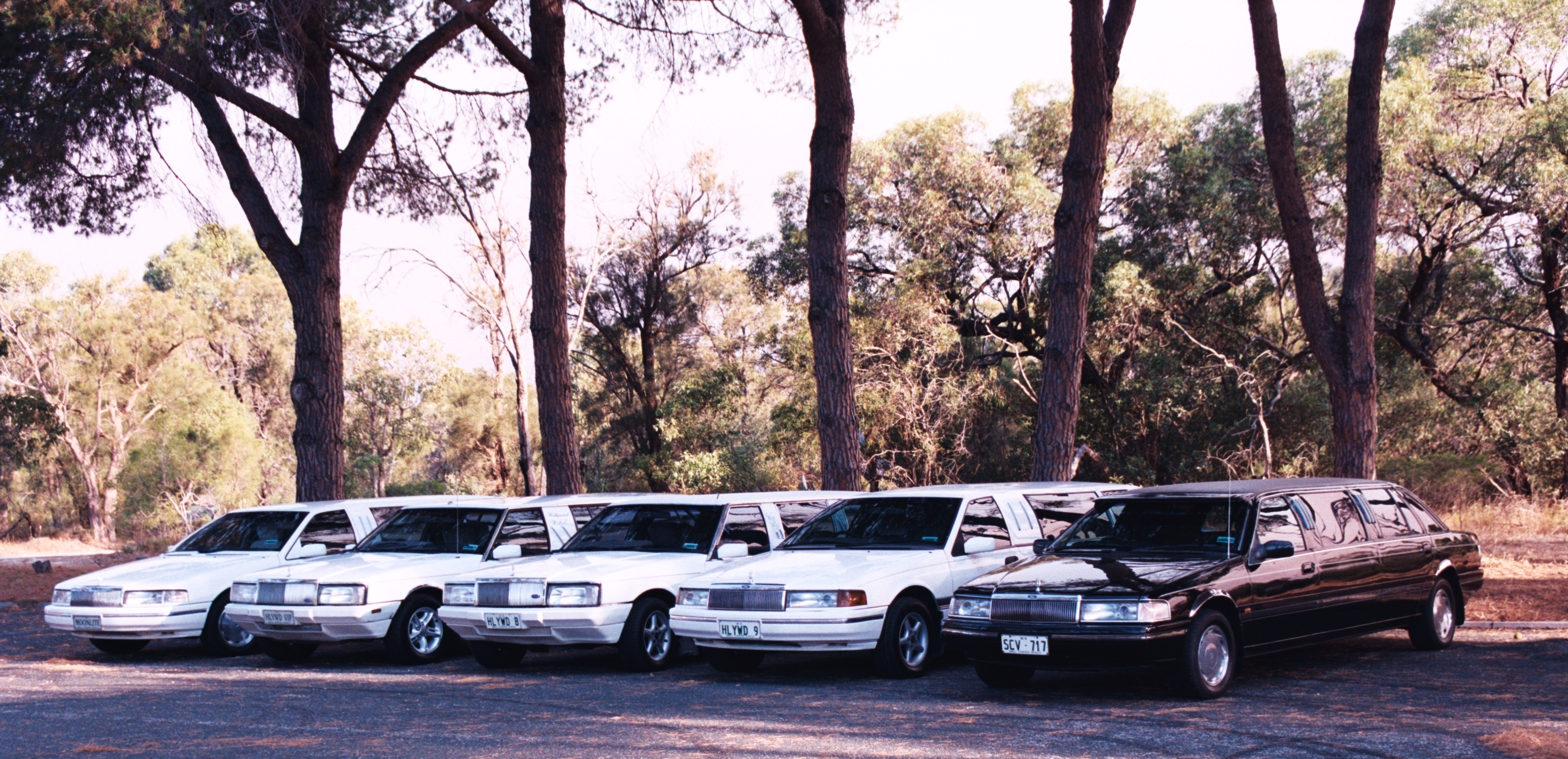 Hollywood VIP Limousines
