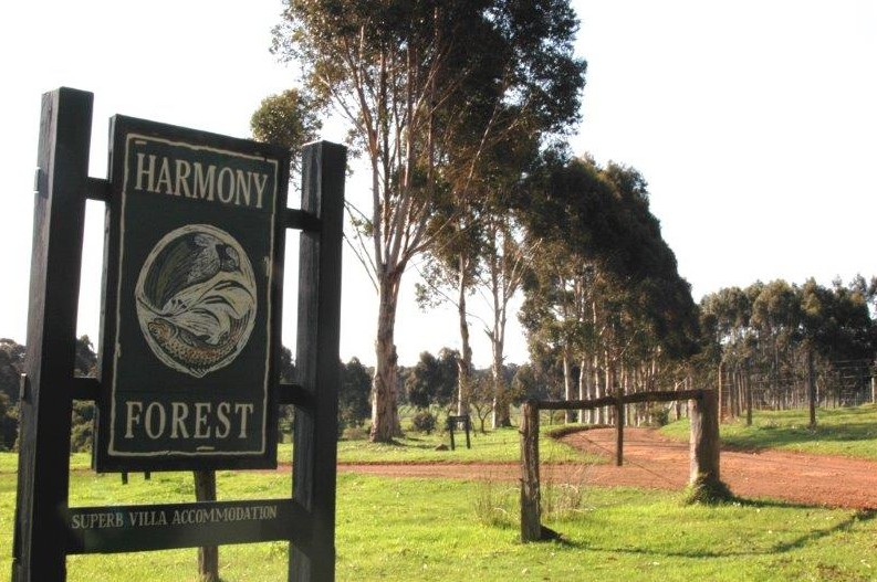 Harmony Forest - Accommodation in Brisbane