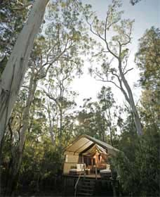 Paperbark Camp - Accommodation in Brisbane