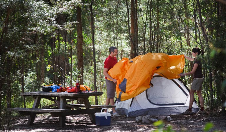 Bald Rock campground and picnic area - Accommodation in Brisbane