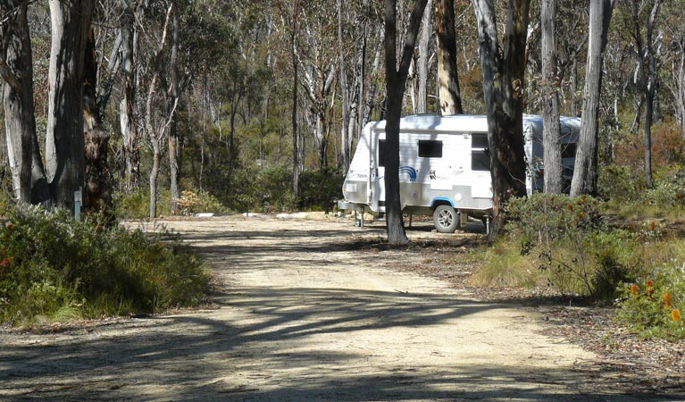 Blatherarm campground and picnic area - Accommodation in Brisbane