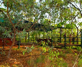 Arnhemland Barramundi Nature Lodge - Accommodation in Brisbane
