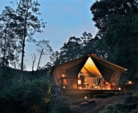 nightfall wilderness camp