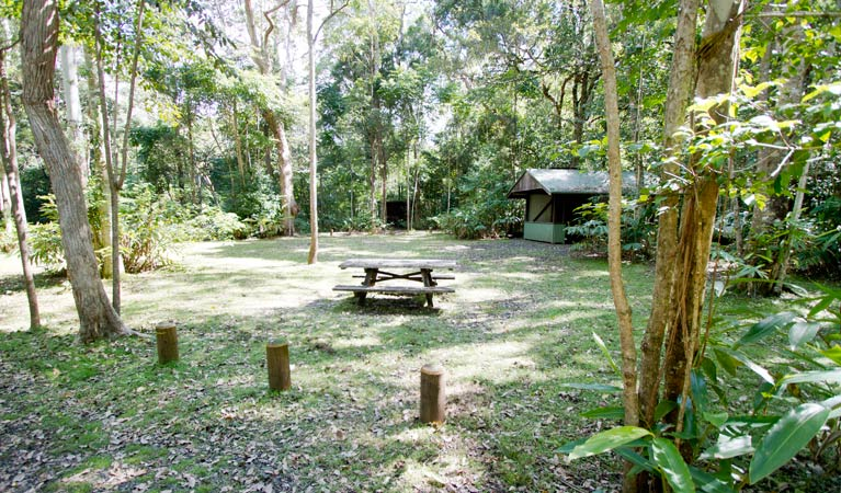Iron Pot Creek campground - Accommodation in Brisbane