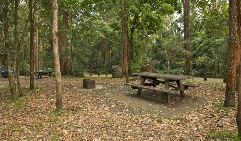 Sheepstation Creek campground - Accommodation in Brisbane
