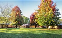 Laurel Hill Forest Lodge - Tumbarumba - Accommodation in Brisbane