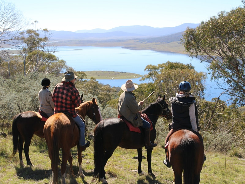 Reynella Homestead and Horseback Rides - Accommodation in Brisbane