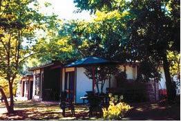 Forest Lodge - Accommodation in Brisbane