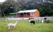 Moorallie Cottage Farm Stay - Accommodation in Brisbane
