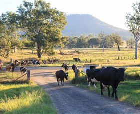 Tommerups Dairy Farmstay - Accommodation in Brisbane