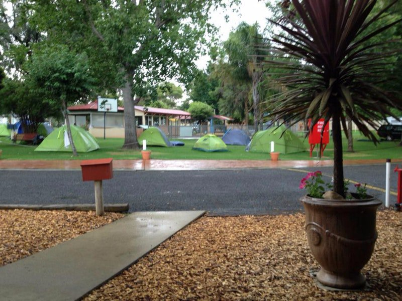 Young Caravan Tourist Park - Accommodation in Brisbane