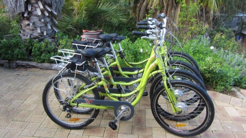 Paul's Eco E Bike Tours - Accommodation in Brisbane