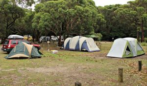 Pretty Beach Campground Murramarang National Park - Accommodation in Brisbane