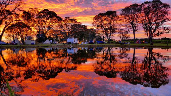 Coonawarra Bush Holiday Park - Accommodation in Brisbane