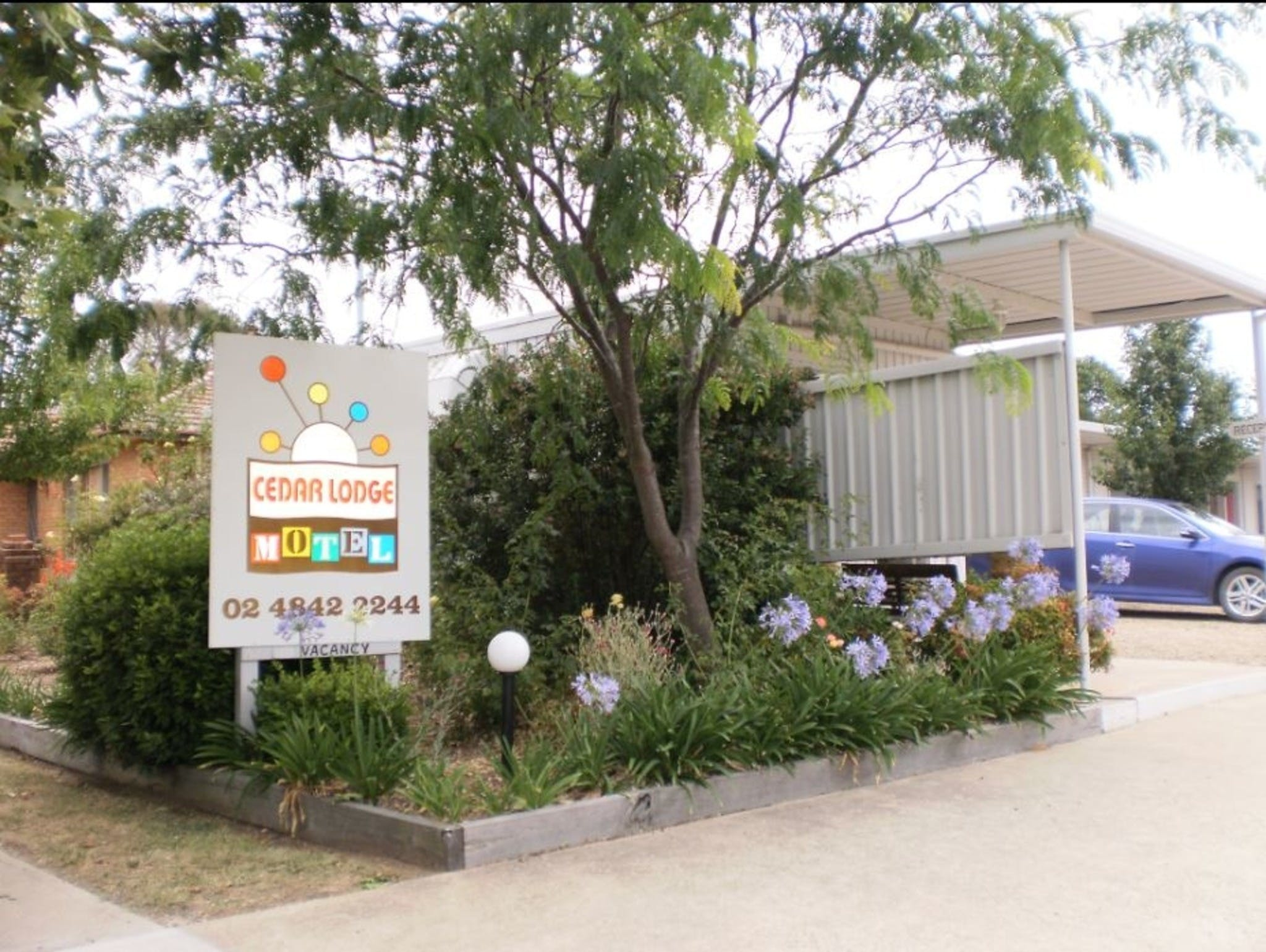Cedar Lodge Motel - Accommodation in Brisbane