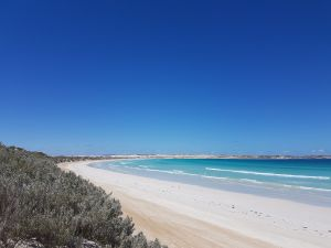 Coffin Bay National Park Campgrounds - Accommodation in Brisbane