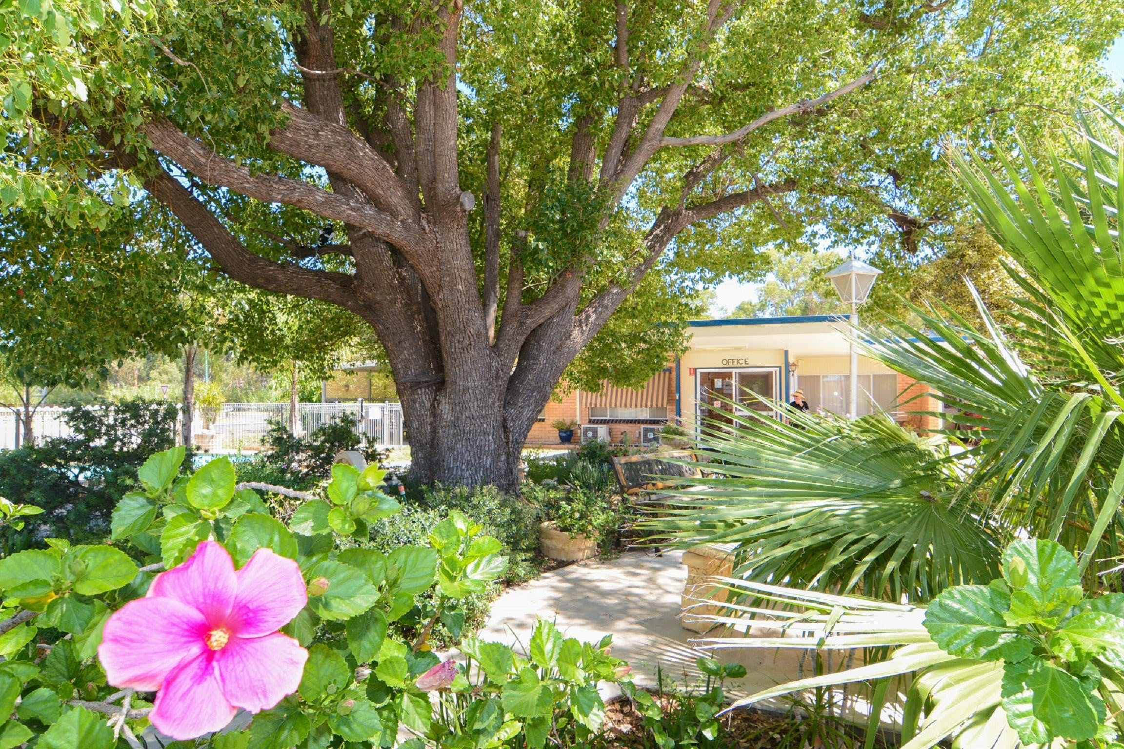 Balranald Sturt Motel - Accommodation in Brisbane