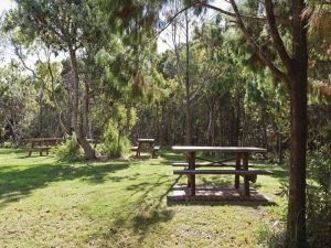 Illaroo group camping area - Accommodation in Brisbane