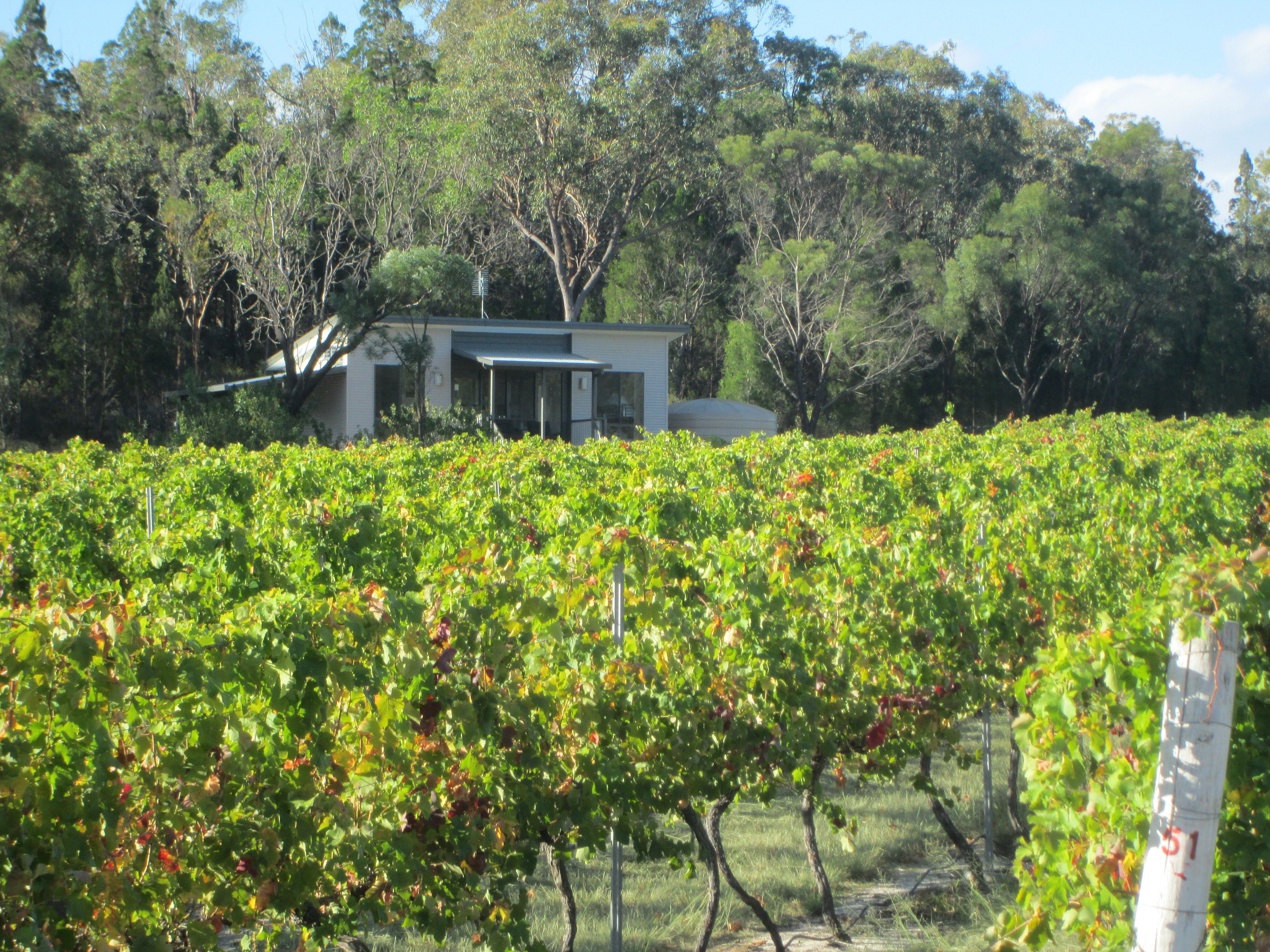 Just Red Wines Vineyard Cabins - Accommodation in Brisbane