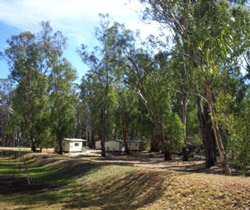 Balranald Caravan Park - Accommodation in Brisbane