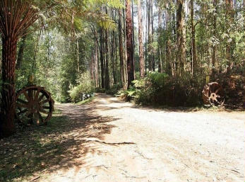 Hill n Dale Farm Cottages - Accommodation in Brisbane