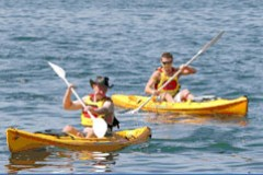 Manly Kayaks - Accommodation in Brisbane