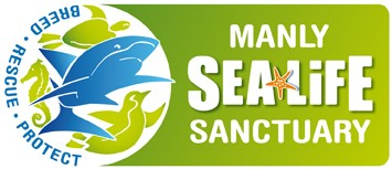 Manly SEA LIFE Sanctuary - Accommodation in Brisbane