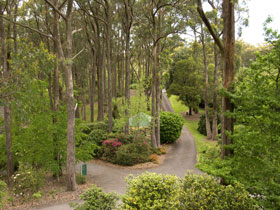 Mount Lofty Botanic Garden - Accommodation in Brisbane