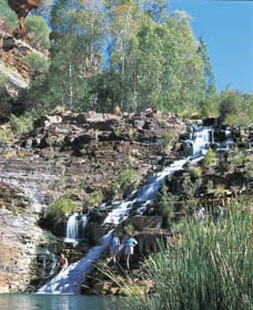 Fortescue Falls - Accommodation in Brisbane