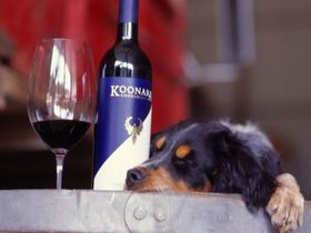 Koonara Wines - Accommodation in Brisbane