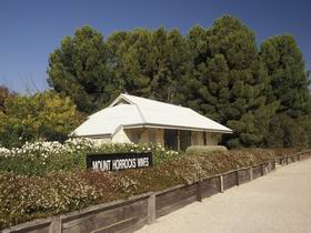Mount Horrocks Wines and The Station Cafe - Accommodation in Brisbane