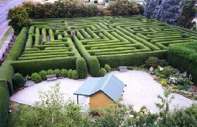 Westbury Maze and Tea Room - Accommodation in Brisbane
