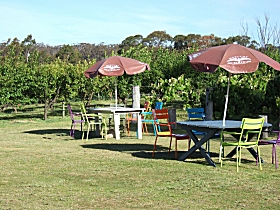 Cerise Brook Orchard  Family Golf - Accommodation in Brisbane