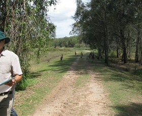 Coombabah Lakes Conservation Area - Accommodation in Brisbane