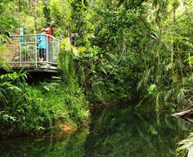 Djiru National Park - Accommodation in Brisbane