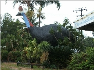 The Big Cassowary - Accommodation in Brisbane