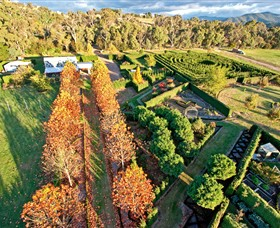 High Country Maze - Accommodation in Brisbane