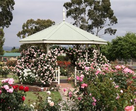Morwell Centenary Rose Garden - Accommodation in Brisbane