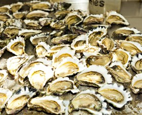 Wheelers Oysters - Accommodation in Brisbane