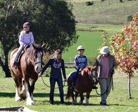 Bathurst Farm Experience - Accommodation in Brisbane