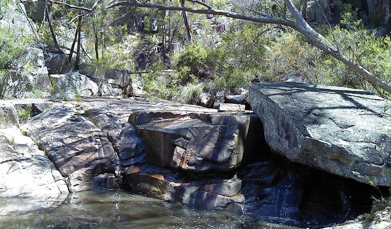 Torrington State Conservation Area - Accommodation in Brisbane