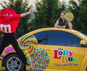 The Lolly Bug - Accommodation in Brisbane