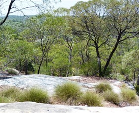White Mountains National Park - Accommodation in Brisbane