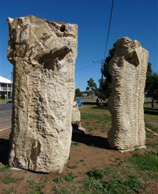 Fossilised Forrest Sculptures - Accommodation in Brisbane